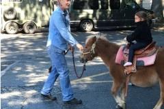 Pony1-e1507598109136